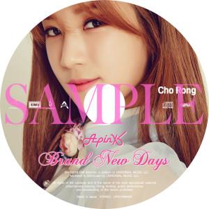 CD_EMI_ディスクPict001