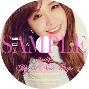 CD_EMI_ディスクPict003